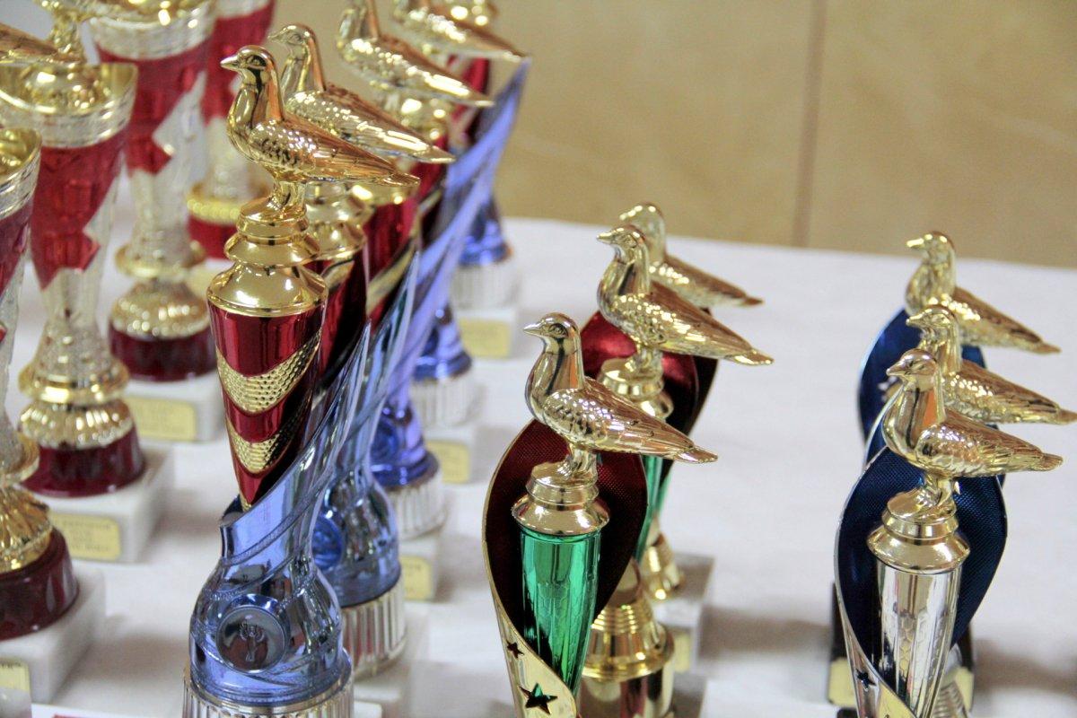 Uroczyste zakończenie sezonu oraz wręczenie pucharów i dyplomów za sezon 2019 roku